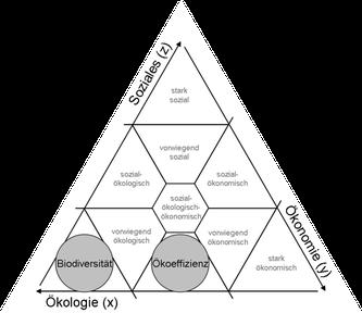 Integrierendes Nachhaltigkeitsdreieck (Alexandro Kleine)