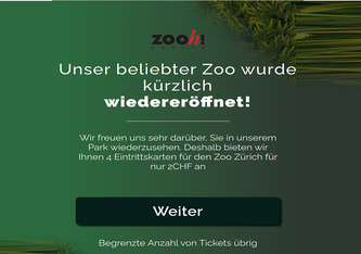 Printscreen der Fake-Website