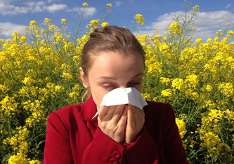Heuschnupfen und andere Allergien können das Leben für Betroffene stark erschweren. (Pixabay.com © cenczi (CC0 Creative Commons))