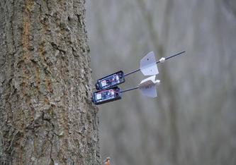 Die Flugroboter können mit Sensoren bestückte Pfeile selbst bei dichtem Waldbestand platzieren. Foto: Imperial College London