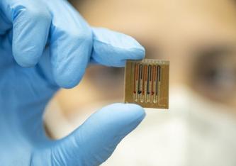 (C) Der Mikrofluidik-Multiplex-Biosensor trägt auf einem Polymerfilm befestigte Proteine, die die Antibiotika erkennen. Patrick Seeger Universität Freiburg