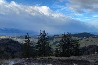 Alp Scheidegg ZH - 10.02.2020 (Bildquelle: asp)