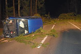 Der Lenker fuhr in eine auf der Strasse liegenden Tanne rein. (Bildquelle: Luzerner Polizei)