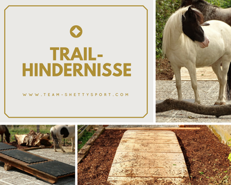 Paddock Trail Offenstall mit Trailhindernissen