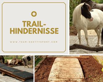 Paddock Trail Offenstall mit Trailhindernissen