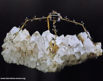 Ювелирные украшения Сальвадора Дали. Ночной паук