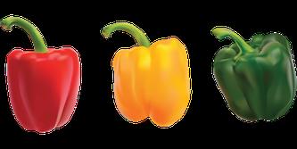 3 Paprika mit 3 Farben