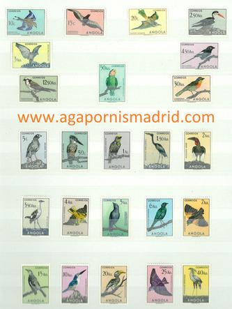 Colección de Sellos de Aves - Angola 1950 (Lovebirds Stamps Angola 1950)