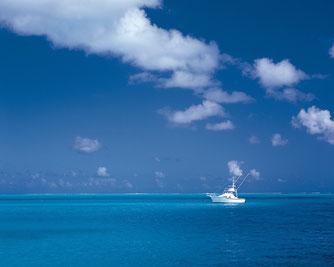 Convoyage de bateaux, nettoyage de bateaux canal du midi