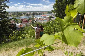 Blick vom Doanu-Panoramaweg auf Deggendorf