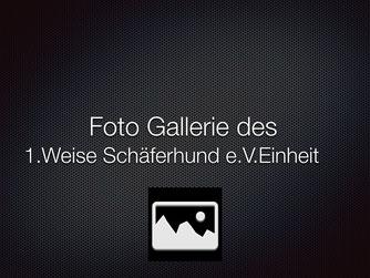1.WS Einheit Schweinfurt 2012
