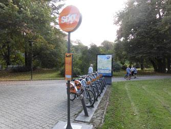 タリンのレンタル自転車