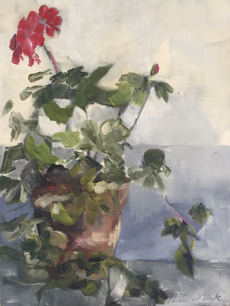 """Geraniums"", oil on panel 30x40 cm by Philine van der Vegte"