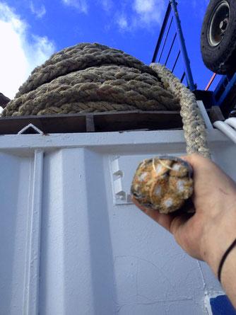 cordage de paquebot utilisé pour imiter le slingshot