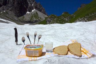 Arlbergo švilpikų respublikoje – mistinės būtybės ir fosilijos - Stalnionytė
