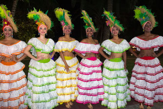Havanai sukanka 500 metų - Stalnionytė