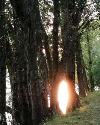 severine saint-maurice, lescerclesdelumiere.com, orbe, coucher de soleil