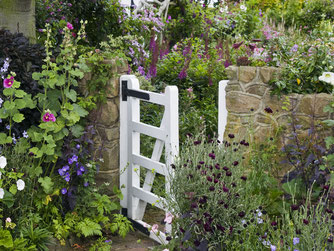 How to  grow a cottage garden,