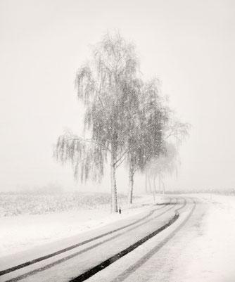 """""""Foggy SnowScape"""" von Lena Weisbek kaufen"""
