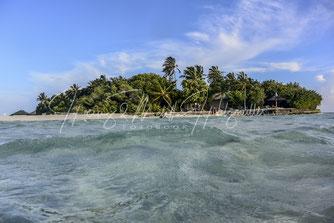 Embudu Island Malediven