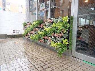 ミニ壁面緑化