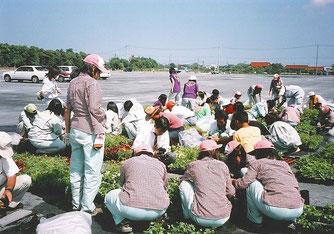 県下4つの農業高校生と共同制作