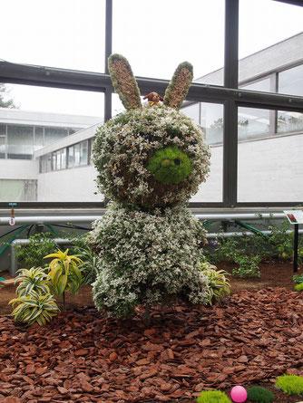 うさぎの立体花壇