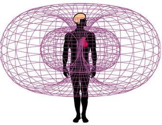 champs magnétiques corps