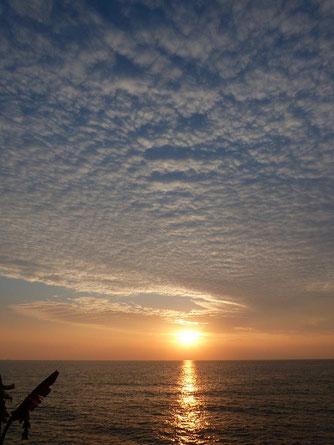 ウロコ雲と夕日~!