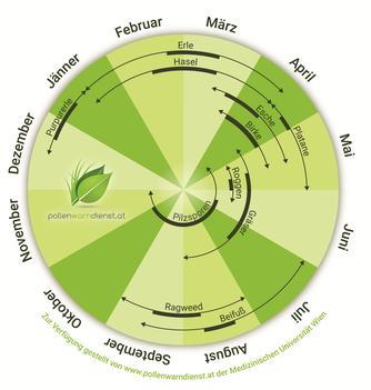 Pollen-Jahresrad: in 9 von 12 Monaten im Jahr haben unterschiedliche Pollen Saison.