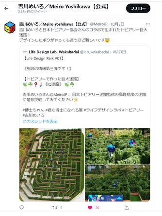 アルテラナンテラの植栽