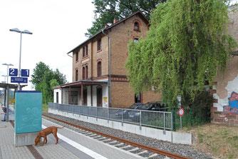 Denkmalgeschütztes Bahnhofsgebäude von Mümling-Grumbach: Sommerquartier für Tausende Fledermäuse mit Jungen