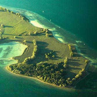 Luftbild der Halbinsel Mettnau