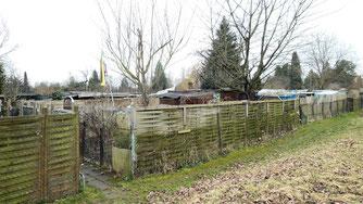 Kleingärten Grünbühl West im März 2018