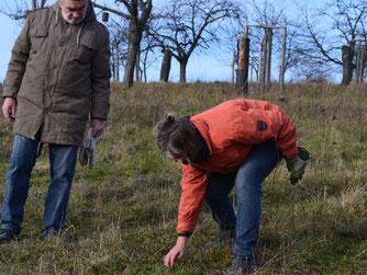 Franz Lambert und Cornelia Schilling beobachten die Entwicklung einiger seltenen Pflanzen.   Foto: Rolf Reichelt