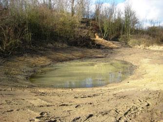 Dasselbe Gewässer nach erfolgter Sanierung