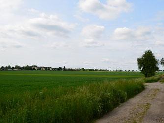Das geplante Baugebiet am Södeweg in Wolfenbüttel.