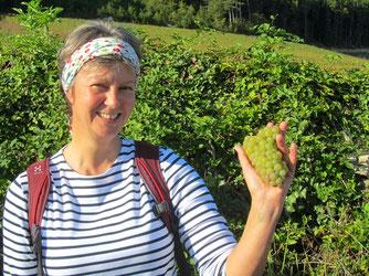 visites guidées Beaune, Bourgogne, vignoble bourguignon