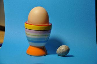 Vergleich Amsel- und Hühnerei│Foto: Stefan Bosch