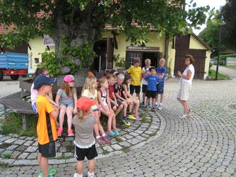 Die Kinder beim Ferienprogramm lauschen den Erklärungen  Foto: NABU Römerstein