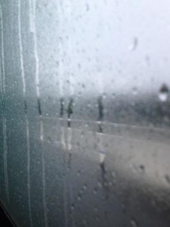Im Bus. Fenster geschlossen. Ausnahmsweise.