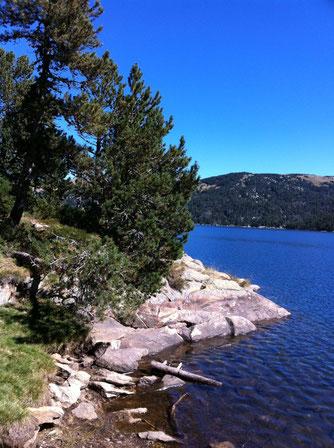 Rives bleutées du Lac des Bouillouses