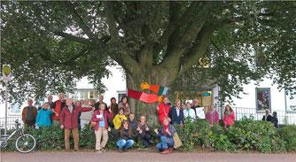 """""""Bunter Protest"""" vor Blutbuche des Johanneums. - Foto: M. Bernhard-Beeskow"""