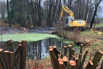 Baggerarbeiten am Teich - Foto: NABU /Kuhlmann
