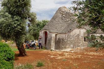 Bäuerliches Caselle bei Fasano in Apulien