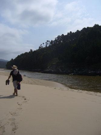 Caminando por playa Vivir Haciendo lo que te apasiona y aportar tus talentos al mundo - HastaDondeTuQuierasLlegar - HDTQLL - Coaching
