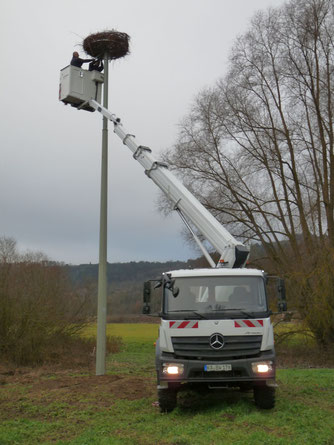 Die Mitarbeiter von Netze BW beim Anbringen des Nistkorbs auf dem von ihnen errichteten Mast.