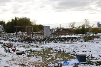 2月9日(日)農園の静かな雪景色 遠くに明石大橋が見えます。