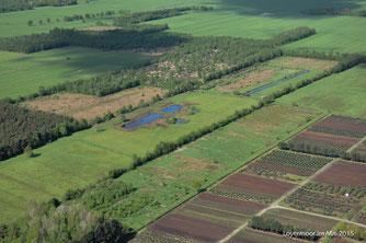 Luftaufnahme des Gebietes - der mittige, zentrale Streifen zeigt die NABU-Flächen mit etlichen Stillgewässern