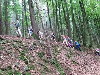 Ludwig Schürg (NABU Bad Marienberg) klettert mit den Kindern quer durch den Wald